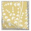Armeria Honey Curtains slat image