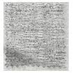 Betula Silver Roman Blind sample image