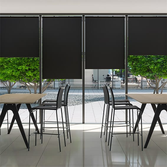 Contract Capital Ebony Roller Blind