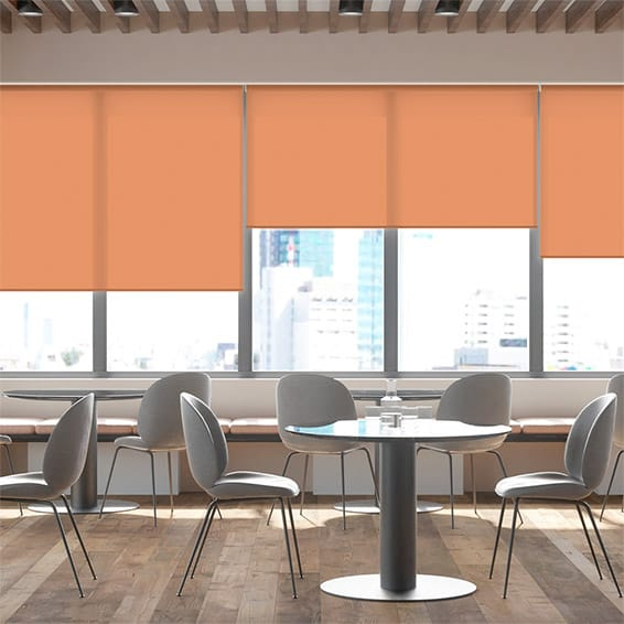 Contract City Cantaloupe Orange Roller Blind