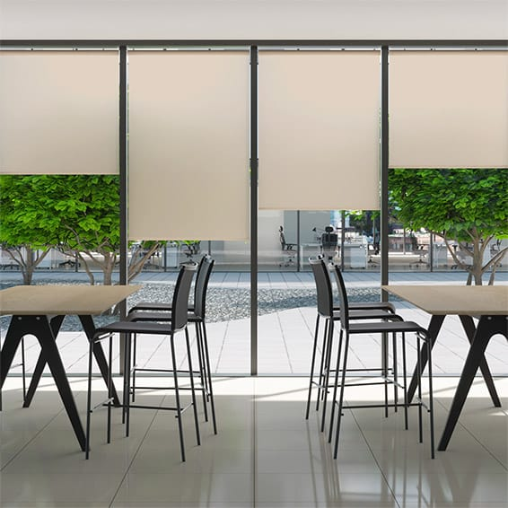 Contract City Champagne Roller Blind
