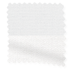 Double Roller Brilliant White swatch image