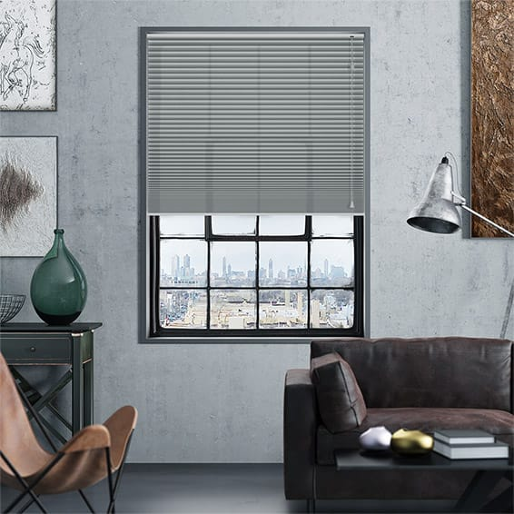 DuoLight Nickel Grey Thermal Blind
