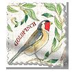 Garden Birds Multi Roman Blind swatch image