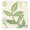 Large Rosehip Leaf Light Green Roman Blind swatch image