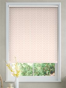 Linear Stem Pink Roller Blind thumbnail image