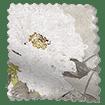 Paeonia Velvet Neutral swatch image