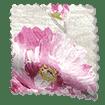 Paeonia Velvet Rose swatch image