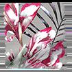 Paradise Raspberry swatch image
