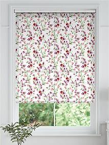 Sweet Pea Pink thumbnail image