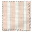Tiger Stripe Blush swatch image