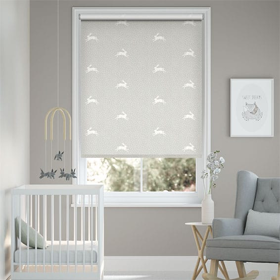 Warren Dove Grey Roller Blind