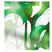 Wave Rainforest Moss swatch image