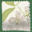 Wisteria Blossom Fern Roman Blind swatch image